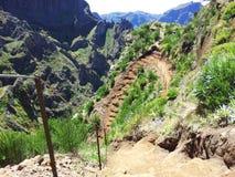 Pico Areeiro arkivbilder