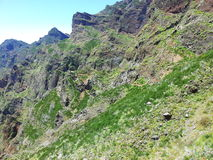 Pico Areeiro royaltyfria bilder