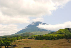 Pico, Azores Royalty Free Stock Photo