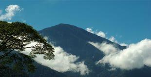 Pico com nuvens e árvore Fotografia de Stock Royalty Free