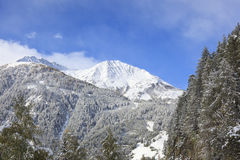 Pico coronado de nieve Foto de archivo libre de regalías