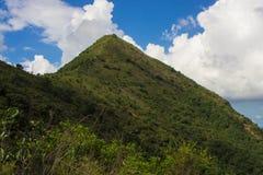 Pico da agulha sob o céu azul Fotos de Stock Royalty Free