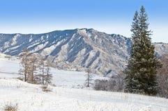 Pico da montanha e da pele-árvore. Inverno em Sibéria. Fotografia de Stock