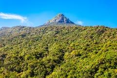 Pico de Adams, Sri Lanka imagenes de archivo