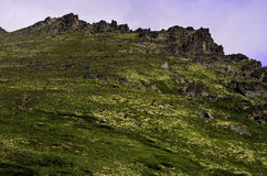 Pico de Alaska Imágenes de archivo libres de regalías