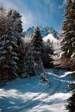 Pico de Caraiman Imagem de Stock Royalty Free