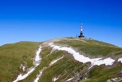 Pico de Costila Fotografia de Stock Royalty Free