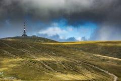Pico de Costila Foto de Stock