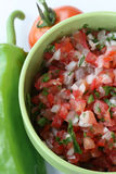 Pico de Gallo Lizenzfreie Stockfotos