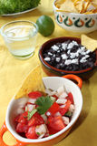 Pico de gallo and Black bean salsa Royalty Free Stock Photos