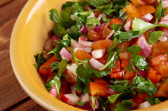 Pico de gallo. In Mexican cuisine.also called salsa fresca stock photography