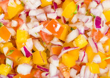 Pico de Gallo Royalty Free Stock Photography