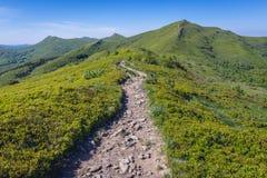 Pico de Halicz en las montañas de Bieszczady Fotos de archivo libres de regalías