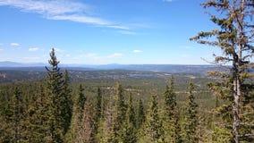 Pico de los lucios de Colorado Foto de archivo