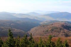 Pico de Mogielica - Beskid Wyspowy, Polônia Imagens de Stock Royalty Free