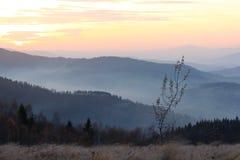 Pico de Mogielica - Beskid Wyspowy, Polônia Imagens de Stock