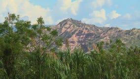 Pico de montaña con los árboles metrajes