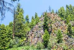 Pico de montaña dentado en medio de árboles verdes enormes en Montana imagen de archivo
