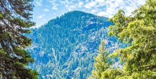 Pico de montaña dentado enmarcado por los árboles verdes enormes en Montana foto de archivo libre de regalías