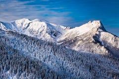 Pico de montaña en la salida del sol en invierno Foto de archivo libre de regalías