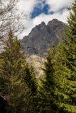 Pico de montaña enmarcado por los árboles en Gressoney Imagen de archivo libre de regalías
