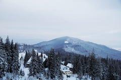 Pico de montaña Nevado por la mañana Fotos de archivo libres de regalías