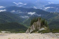 Pico de montaña sobre el bosque fotos de archivo libres de regalías