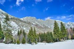 Pico de montanha Foto de Stock