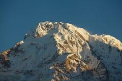 Pico de montanha Annapurna sul no nascer do sol nos Himalayas Nepal Imagem de Stock