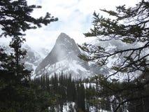 Pico de montanha de RMNP Imagem de Stock Royalty Free