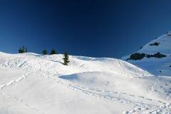 Pico de montanha do inverno Fotografia de Stock
