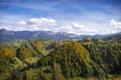 Pico de montanha e floresta - Autumn Foliage fotos de stock