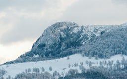 Pico de montanha em montanhas Carpathian, em um dia de inverno nebuloso Fotos de Stock Royalty Free