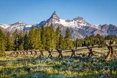 Pico de montanha, estrada de Beartooth Imagem de Stock Royalty Free