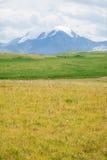 Pico de montanha nevado fotografia de stock