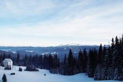 Pico de montanha nevado na manhã Foto de Stock Royalty Free