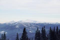 Pico de montanha nevado na manhã Imagens de Stock