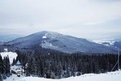 Pico de montanha nevado na manhã Fotos de Stock Royalty Free