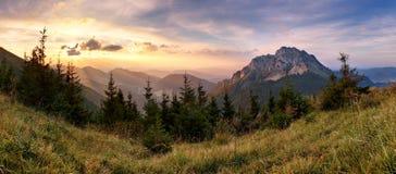 Pico de montanha Rozsutec de Eslováquia Fotografia de Stock