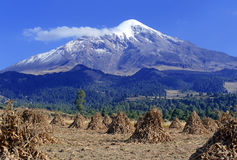 Pico de Orizaba volcano, Mexico. Pico de Orizaba volcano, or Citlaltepetl, is the highest mountain in Mexico, maintains glaciers and is a popular peak to climb royalty free stock images