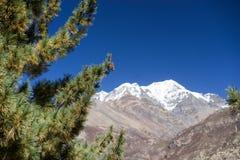 Pico de Pisang e floresta nas montanhas de Himalaya, região de Annapuna, Nepal Fotografia de Stock Royalty Free