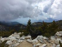 Pico de San Jacinto Looking para a floresta Imagens de Stock Royalty Free