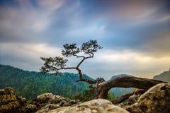 Pico de Sokolica em montanhas de Pieniny foto de stock royalty free