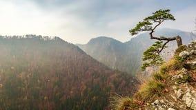 Pico de Sokolica de las montañas en salida del sol, Polonia de Pieniny almacen de metraje de vídeo