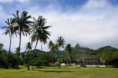 Pico de Te Manga en Rarotonga, cocinero Islands Foto de archivo