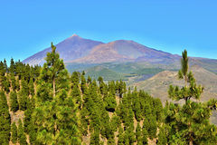 Pico de Teide (Dormant Volcano), Tenerife, Canary Islands, Spain, Europe Stock Images