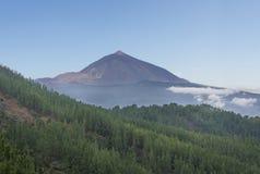 Pico de teide, mountain above the clouds, Tenerife, Spain Stock Image