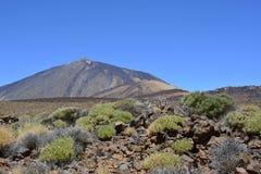 Pico de Teide (Sluimerende Vulkaan), Tenerife, Canarische Eilanden, Spanje, Europa Royalty-vrije Stock Foto's