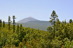 Pico de Teide, Tenerife, Canary Islands, Spain, Europe Royalty Free Stock Images