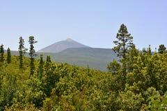 Pico de Teide, Tenerife, Canarische Eilanden, Spanje, Europa Royalty-vrije Stock Afbeeldingen